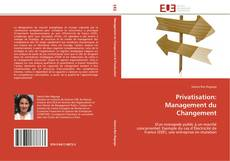 Обложка Privatisation: Management du Changement