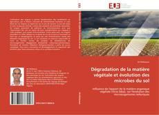 Borítókép a  Dégradation de la matière végétale et évolution des microbes du sol - hoz
