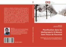 Copertina di Planification dans les  Multiprojects & Mesure Semi Floue de Pauvreté