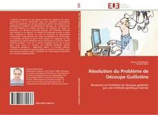 Buchcover von Résolution du Problème de Découpe Guillotine