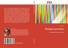 Bookcover of Pilotage isoarchique