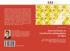 Buchcover von Auto-formation et coordination pédagogique en ligne