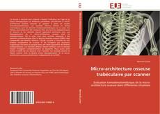 Buchcover von Micro-architecture osseuse trabéculaire par scanner