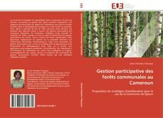 Gestion participative des forêts communales au Cameroun kitap kapağı