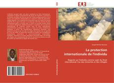 Couverture de La protection internationale de l'individu