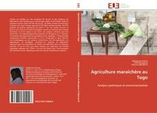 Agriculture maraîchère au Togo的封面