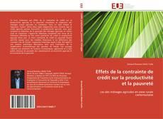 Bookcover of Effets de la contrainte de crédit sur la productivité et la pauvreté