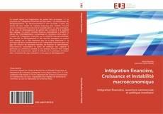 Couverture de Intégration financière, Croissance et Instabilité macroéconomique