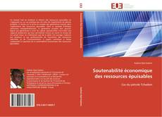 Couverture de Soutenabilité économique des ressources épuisables