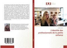 Couverture de L'identité des professionnels de la petite enfance