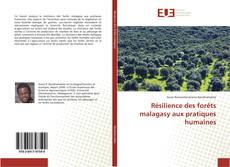 Couverture de Résilience des forêts malagasy aux pratiques humaines