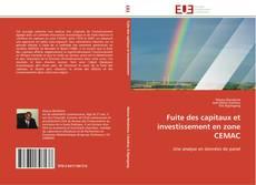 Bookcover of Fuite des capitaux et investissement en zone CEMAC