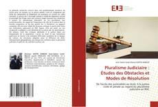 Pluralisme Judiciaire : Études des Obstacles et Modes de Résolution的封面