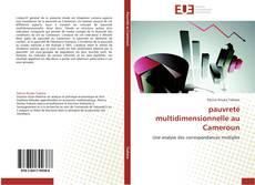 Capa do livro de pauvreté multidimensionnelle au Cameroun