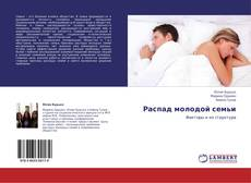 Bookcover of Распад молодой семьи