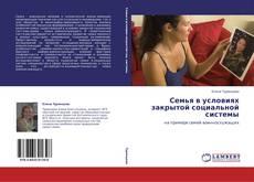 Семья в условиях закрытой социальной системы kitap kapağı