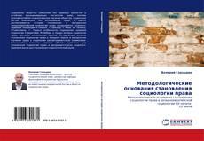 Buchcover von Методологические основания становления социологии права