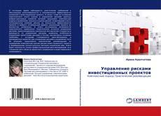 Bookcover of Управление рисками инвестиционных проектов
