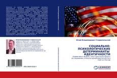 Portada del libro de СОЦИАЛЬНО-ПСИХОЛОГИЧЕСКИЕ ДЕТЕРМИНАНТЫ  ИДЕНТИЧНОСТИ