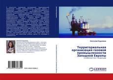 Buchcover von Территориальная организация газовой промышленности Западной Европы