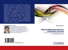 Capa do livro de Идентифицируемость сложных систем