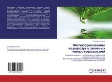Borítókép a  Фотообразование водорода у зеленых микроводорослей - hoz
