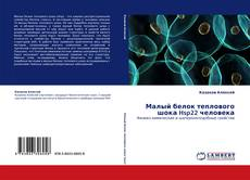 Bookcover of Малый белок теплового шока Hsp22 человека