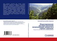 Обложка Моделирование распространения загрязняющих веществ в горных ущельях