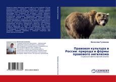 Portada del libro de Правовая культура в России: природа и формы правового нигилизма