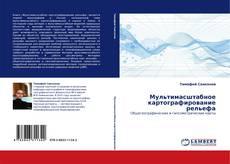 Bookcover of Мультимасштабное картографирование рельефа