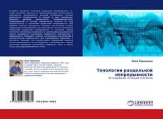 Bookcover of Топологии раздельной непрерывности