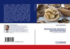 Copertina di Балканские волохи и русские волхвы