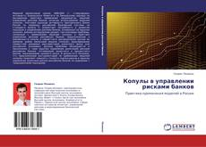 Copertina di Копулы в управлении рисками банков