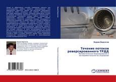 Buchcover von Течение потоков реверсированного ТРДД