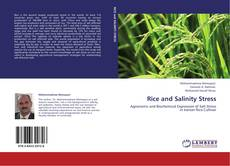 Bookcover of Rice and Salinity Stress