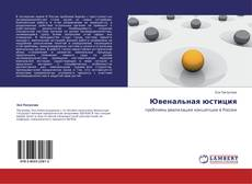 Bookcover of Ювенальная юстиция