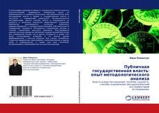 Bookcover of Публичная государственная власть: опыт методологического анализа
