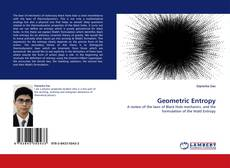 Bookcover of Geometric Entropy