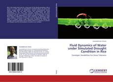 Buchcover von Fluid Dynamics of Water under Simulated Drought Condition in Rice