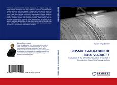 Couverture de SEISMIC EVALUATION OF BOLU VIADUCT 1