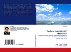 Bookcover of Cyclone Nargis Relief Assistance