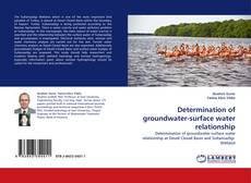Обложка Determination of groundwater-surface water relationship