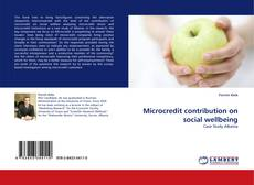 Bookcover of Microcredit contribution on social wellbeing