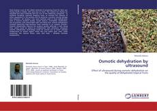 Copertina di Osmotic dehydration by ultrasound