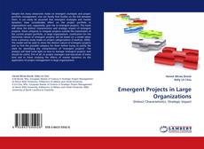 Bookcover of Emergent Projects in Large Organizations