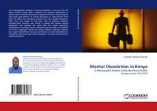 Couverture de Marital Dissolution in Kenya