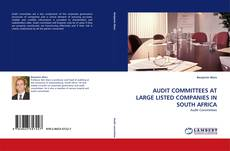 Couverture de AUDIT COMMITTEES AT LARGE LISTED COMPANIES IN SOUTH AFRICA