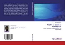 Bookcover of Kaolin to zeolites conversion