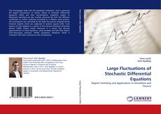 Large Fluctuations of Stochastic Differential Equations kitap kapağı