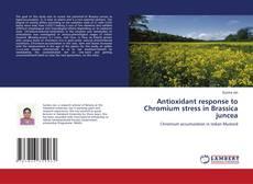 Bookcover of Antioxidant response to Chromium stress in Brassica juncea